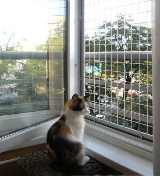 Сетка на окно для кошек своими руками